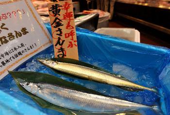 20121003-00000034-asahi-000-3-view.jpg